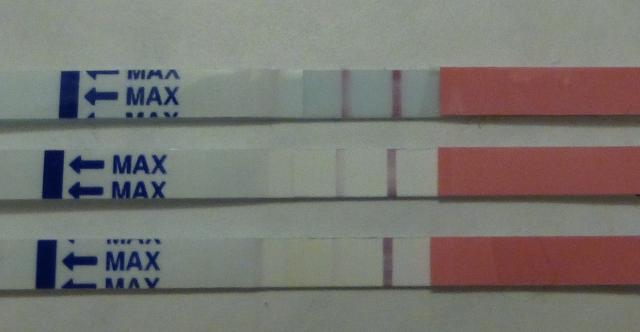 Svagt plus på graviditetstest